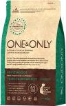 Сухой корм для кошек One&Only Adult индейка с рисом 400г