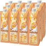 Напиток овсяный Nemoloko Экзотик 0.5% 1л